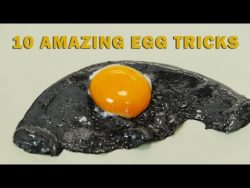 10 Egg Tricks – YouTube