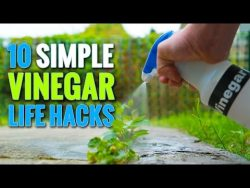 10 Simple Vinegar Life Hacks To Try At Home – YouTube