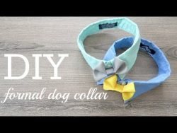 DIY #3- Formal Dog Collar & Call for COLLAB!!! – YouTube