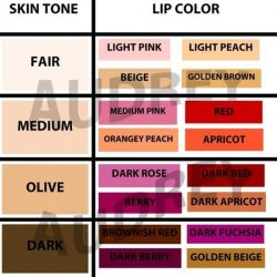 15 Easy Makeup Charts For Beginners