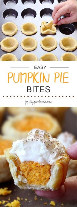 Easy Pumpkin Pie Bites – Sugar Apron